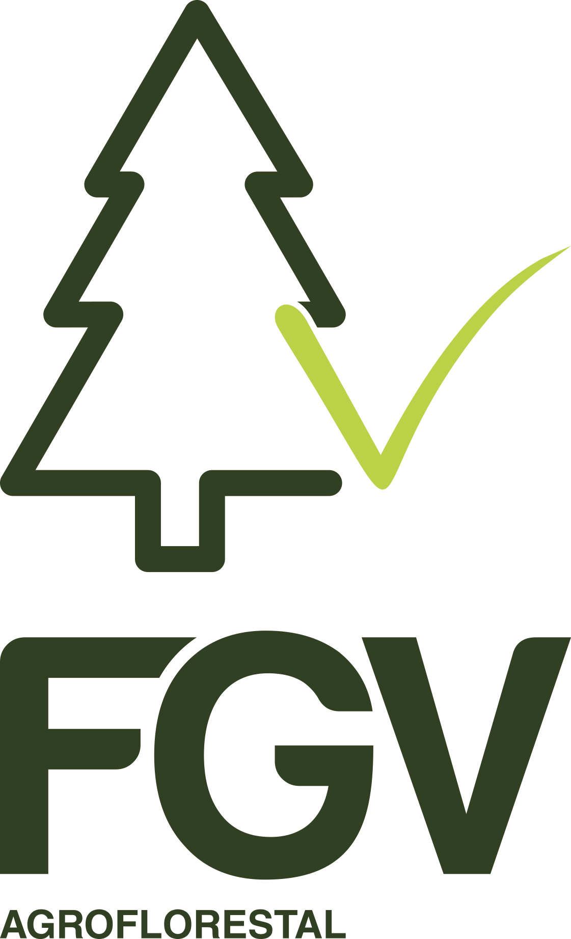 FGV Agroflorestal